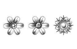miniature-rosaces-appliques-347-630